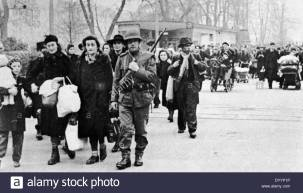 border-crossing-of-jewish-refugees-into-switzerland-DYYP1P